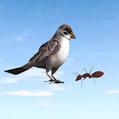 Ant and Sparrow - iStory