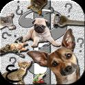 اسأل الحيوانات المضحكة icon