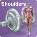 Daily Shoulders Video Workouts icon