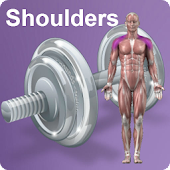 Daily Shoulders Video Workouts