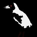 Magpie Begone icon