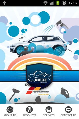 Blue Skie Car Care
