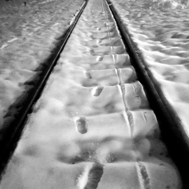 Footsteps. 😊 by Željko Crnich - Uncategorized All Uncategorized ( snow, line, rail, blackandwhite, picoftheday, night, walk )