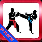 Martial Art Sounds Effects