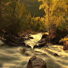 Tunnel Creek N. Co. by Johnny Gomez - Landscapes Waterscapes ( stream, dawn, mountain, forest, golden, river )