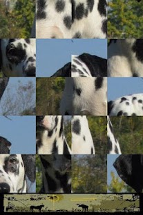Dog Puzzle: Dalmatian - screenshot thumbnail