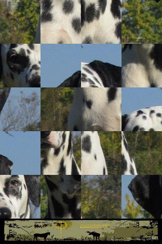 Dog Puzzle: Dalmatian- screenshot