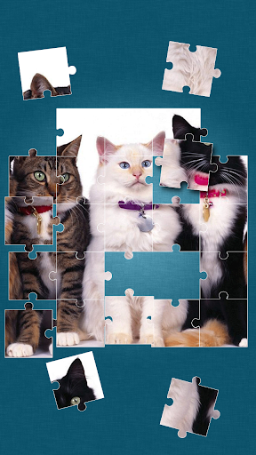 玩免費解謎APP|下載貓的益智遊戲 app不用錢|硬是要APP