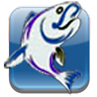Fishing Calendar icon