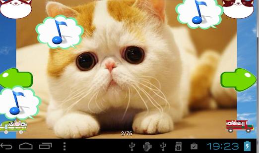 cats animal sounds book kitty 娛樂 App-癮科技App