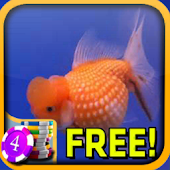 Goldfish Slots - Free
