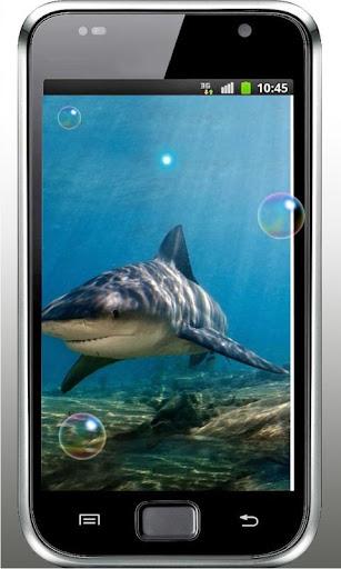 Sharks Free live wallpaper