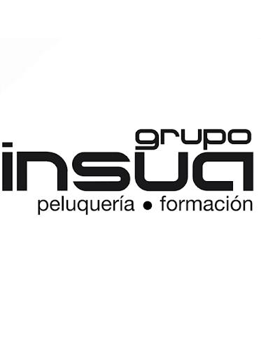 Grupo Insua