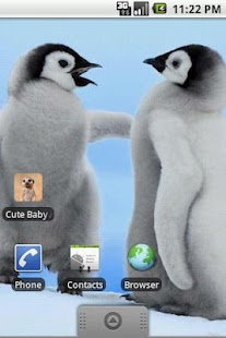 Cute Baby Animals Pictures- screenshot thumbnail