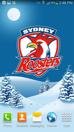Sydney Roosters Snow Globe
