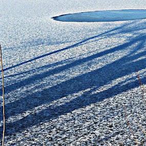 by Nat Bolfan-Stosic - Landscapes Waterscapes ( winter, lake )