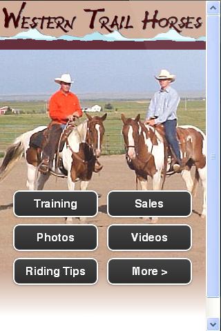 Western Trail Horses