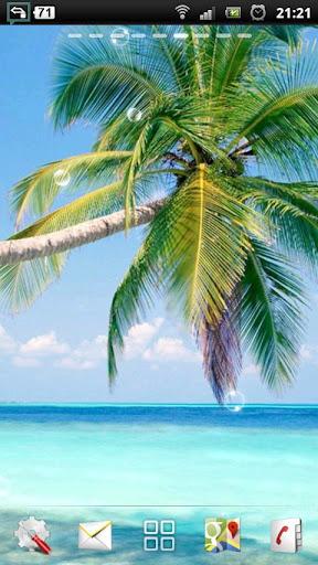 热带海滩 LWP
