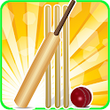 T20 Cricket Blast 2014 icon