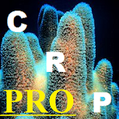 Coral Reef Parameters PRO