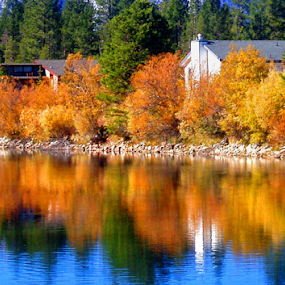 Lake Tahoe 2 by Tatiana Syunyaeva - Landscapes Waterscapes ( water, reflection, nature, autumn, tahoe, fall, forest, landscape, lake tahoe )