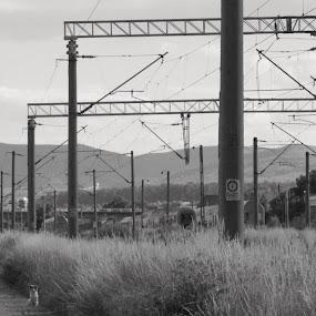 Undeva la periferia Bacaului.... by Otetea Ovidiu - Landscapes Prairies, Meadows & Fields