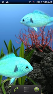 Chromis viridis Trial - screenshot thumbnail