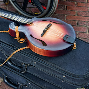 by Charles Ward - Artistic Objects Musical Instruments