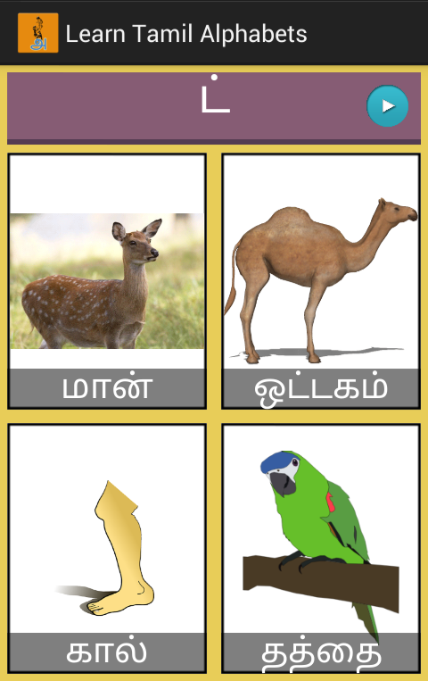 birds images with names in tamil
