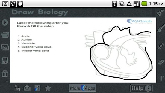 App Draw Biology Apk For Windows Phone Android Games And