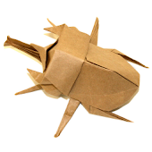Beetle Origami 4