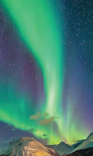 Auroras Borealis Wallpaper