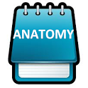 Anatomy Super Flashcards icon
