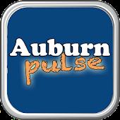 Auburn Pulse