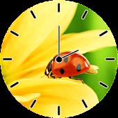 Ladybug Analog Clock