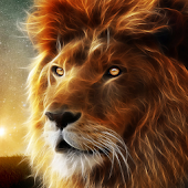 King Lion Live Wallpaper