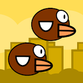 Twin Flight - Bird Duet Game
