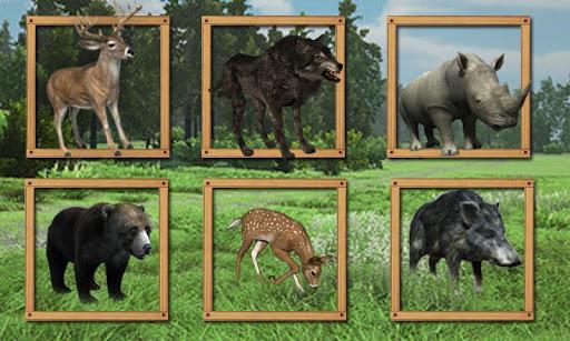 Jungle Animals Hunting 2015