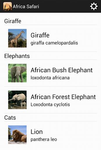 African Safari Wilidlife Guide