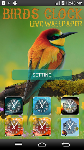 Birds Clock Live Wallpaper