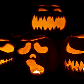 Jack o lanterns by Danielle Falknor - Artistic Objects Other Objects ( lights, pumpkins, halloween photography, jack o lanterns, halloween, pumpkin, carved )
