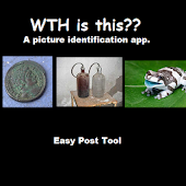 Picture Identification Poster