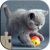Cute Cats Kids Puzzles