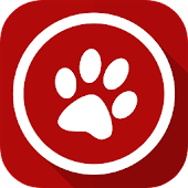 Hunde Efterlysning