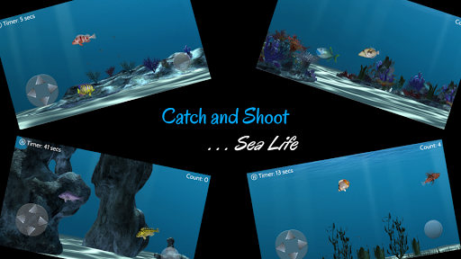 Catch N Shoot 2 Free