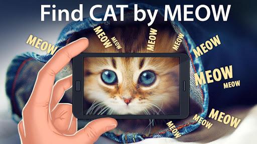 查找的猫喵喵
