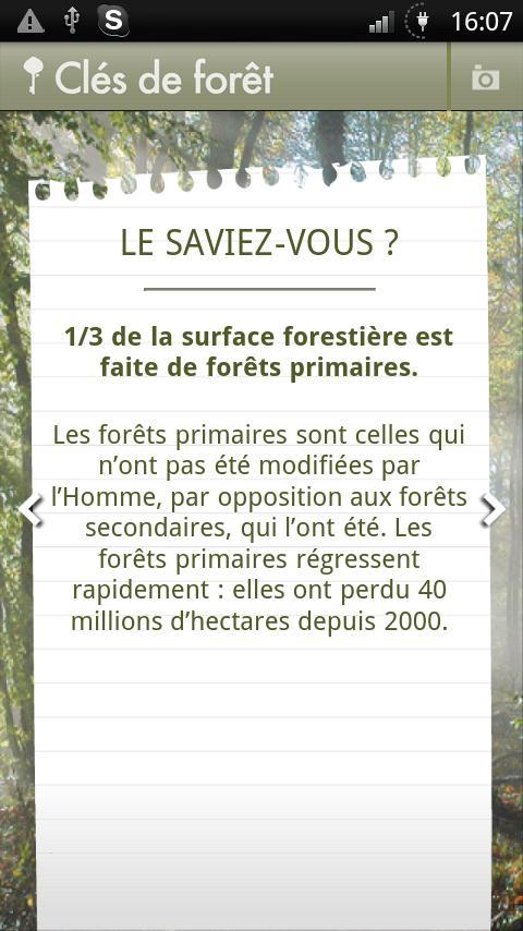 Clés de forêt- screenshot