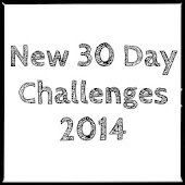 New 30 Day Challenges 2014