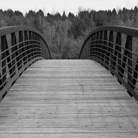 The Other Side by Rhonda Silverton - Black & White Buildings & Architecture ( canada, park, caledon, forks of the credit, ontario, bridge,  )