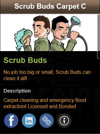 Scrub Buds Carpet Cleaning